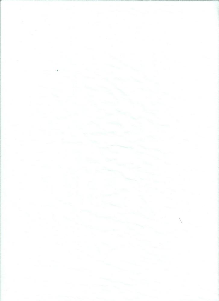 BT80046 / PARIS WHITE