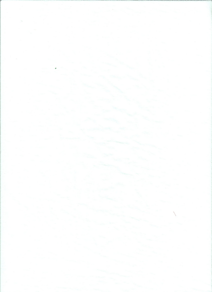 BT80046 / PARIS WHITE / PARIS 100P
